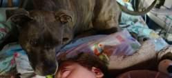 Imagen del perro Tascha junto al niño Dylan. (FACEBOOK)