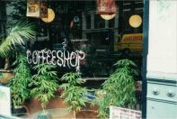 droga-coffee_shop-1