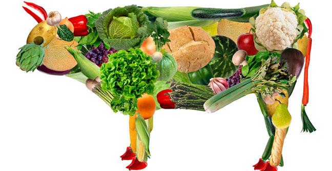 vaca-llena-de-vegetales