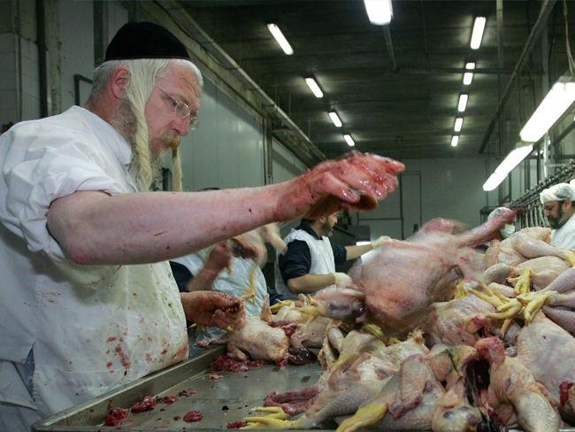 carne bélgica