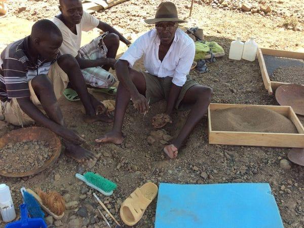 Alesi fue descubierta por un vendedor de fósiles en 2014