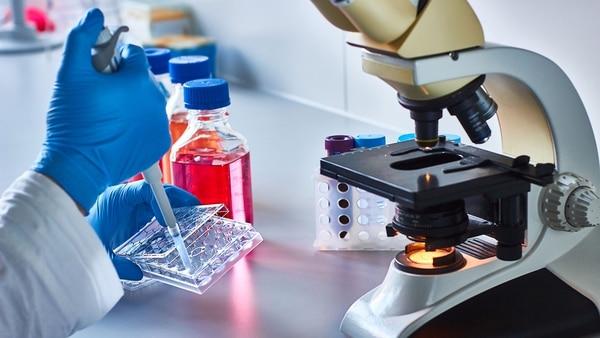 La IO y su enfoque innovador que tiene el potencial de cambiar el modo de tratar las enfermedades oncológicas (Getty)