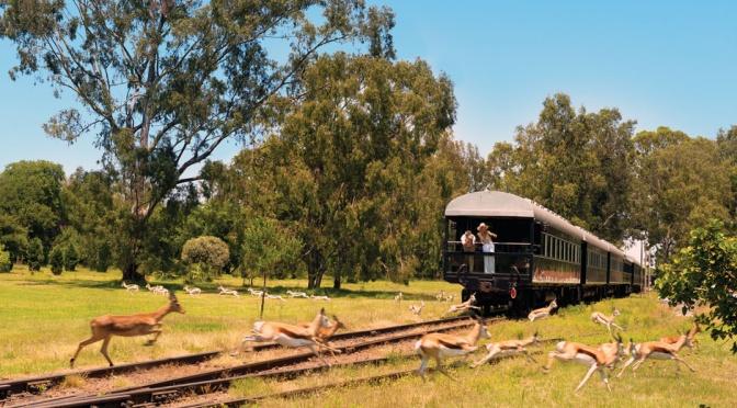 Rovos Rail, lujo y exclusividad sobre raíles