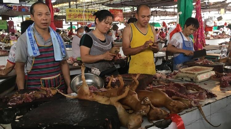Los animales se cocinan y se sirven como guisos, típicamente acompañados de fruta de lichi, en cientos de restaurantes en toda la región. (AFP)