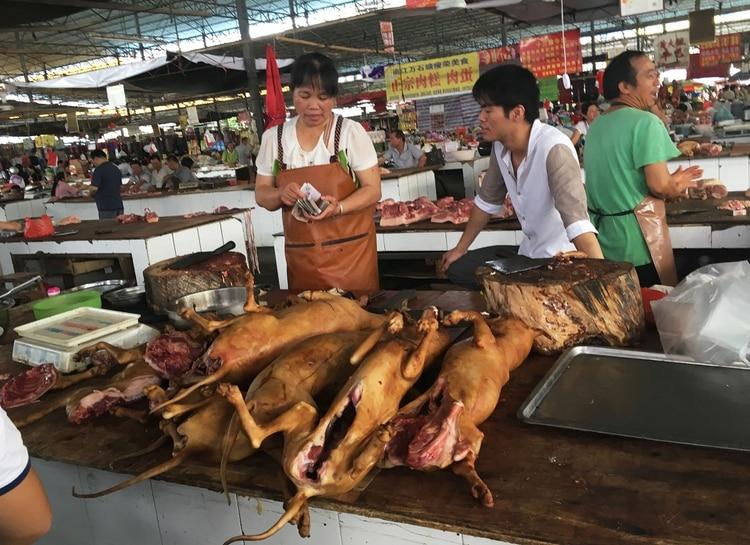 Al igual que los festivales occidentales en los que vacas, cerdos y polos son asados o cocinados, en Yulin sucede con los perros, lo que despertó el repudio mundial. (AFP)