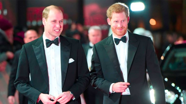 Los príncipes William y Harry en el Royal Albert Hall de Londres para el estreno de