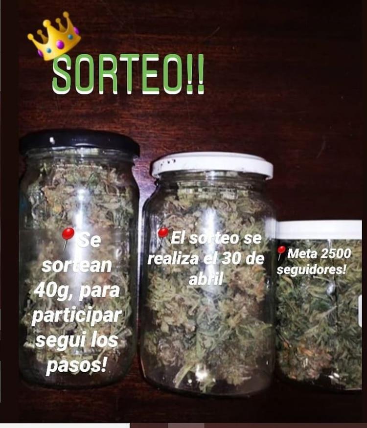 Instagram: sorteo de marihuana en Villa del Parque.
