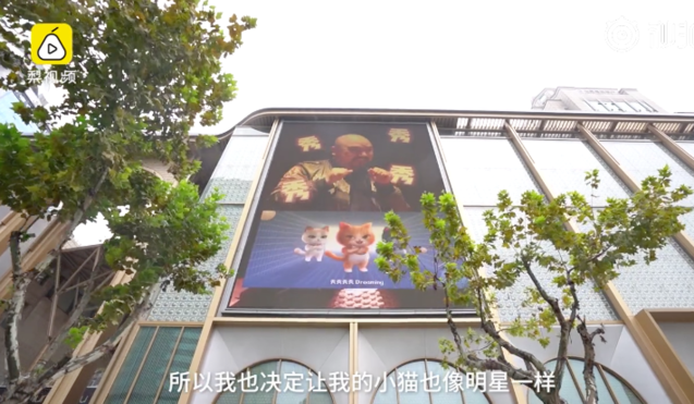 Un hombre en Hangzhou alquiló un espacio publicitario en una pantalla digital fuera de un centro comercial para exhibir su gato virtual de Taobao.  Imagen: Pear Video a través de Weibo