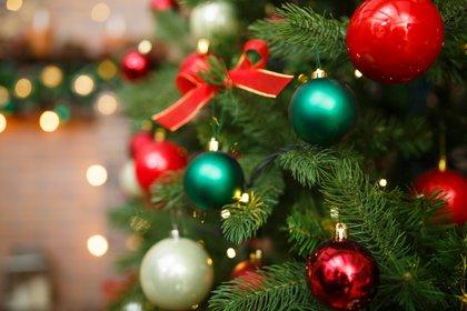 Esferas, moños, cintas y luces son las más elegidas por los argentinos para decorar los arbolitos de Navidad  (Shutterstock)