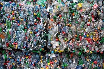 Cada año, el planeta produce miles de millones de toneladas de recursos naturales (EFE)